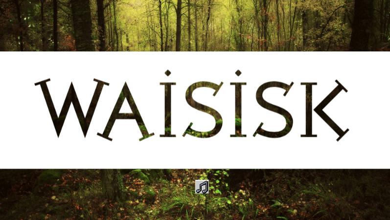 Waisisk