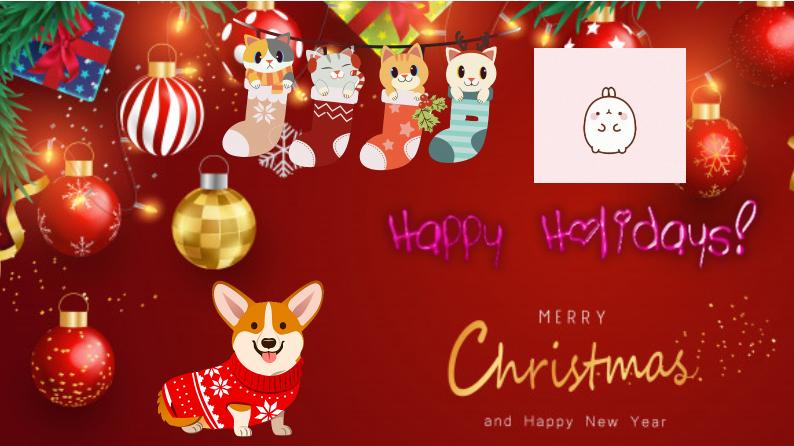 My Christmas Holiday!